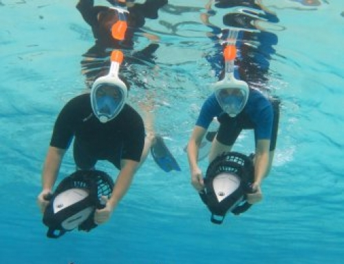 Power- Snorkels give you the opportunity to have a magnificent experience!
